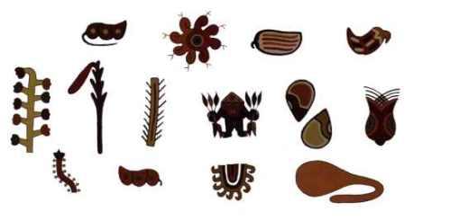 flore-nazca